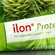 ilon Protect-Salbe mit Kiefer im Hintergrund